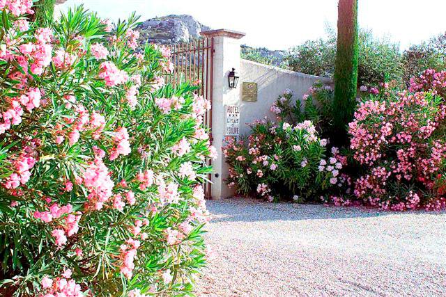 Jardinier paysagiste fontvieille 13 paca le jardin des for Le jardin des 5 sens aix en provence